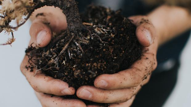 soil in a man's hand
